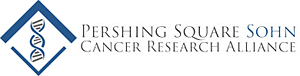 2018 Prize for Young Investigators in Cancer Research